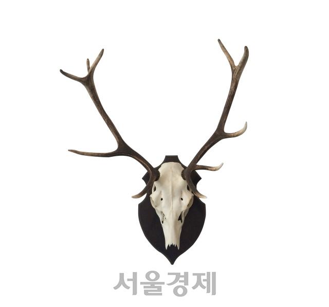 '동영상 좌표 좀' 정준영 몰카 반응에 여성들 '허탈하다'