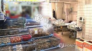 부산 횟집서 생선회 먹은 50대 6명 식중독 증세…병원 치료 중