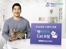 """""""집사 걱정 한시름 덜겠네""""…고양이 전용보험 출시"""