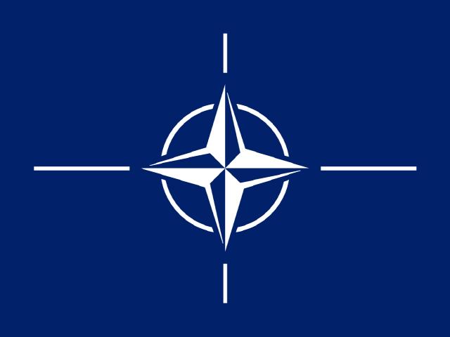 [만파식적] NATO