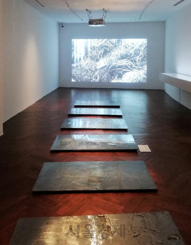 '분단에서 공존으로' 예술로 재해석한 DMZ, 일본 첫 전시