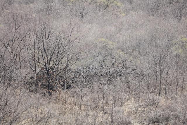 철원 DMZ서 '궁예성 흔적' 찾았다