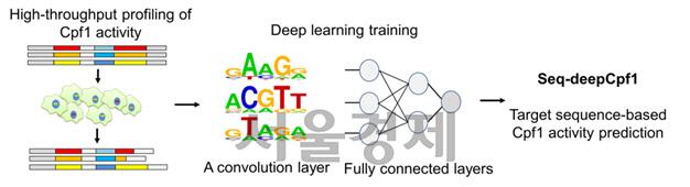 AI로 유전자 가위 효율성 높이는 해법 찾아..유전자 치료 길 열까