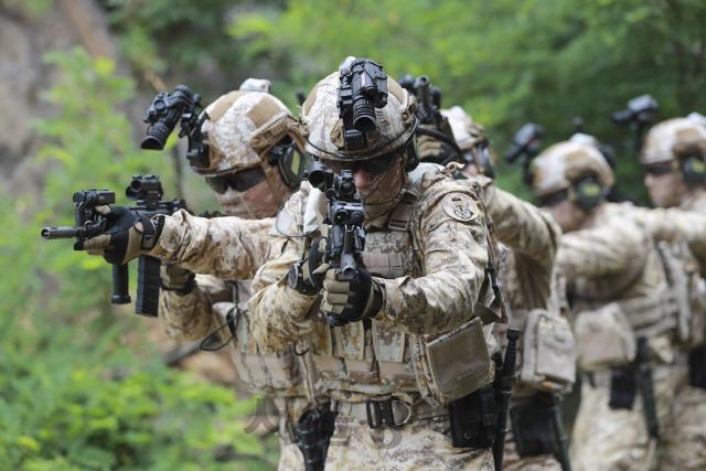 [권홍우 선임기자의 무기이야기] 고성능 소총, 국내 개발로 유턴…기관총·유탄발사기도 바꾼다