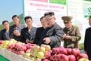 [뒷북정치] 3차 고난의 행군 예고 北...비핵화 협상 '쌀'의 역사