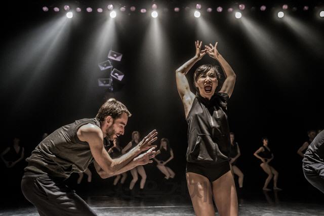 춤으로 찾는 '공존'의 의미...키부츠무용단 '피난처' 초연