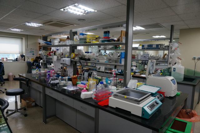 [VC PICK-바이오루키]1SCM생명과학:줄기세포 고순도 분리 독보적…'11월 상장'
