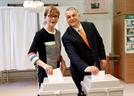 유럽의회 선거 종료