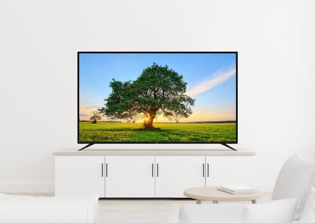 삼성 '인도' LG '일본'..프리미엄 TV 승자는