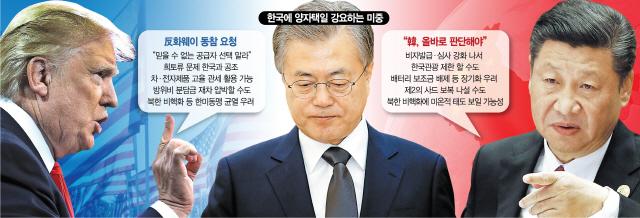 선택 강요받는 韓...中 편들자니 관세공포·美 손잡자니 '제2사드'