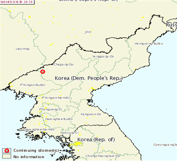 [썸_레터]북한까지 번진 '아프리카돼지열병(ASF)'...왜 백신이 없을까?