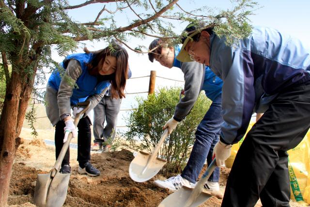 [ECO&LIFE] 나무 심고...종이컵 안쓰고...한국콜마 임직원, 일상서도 '환경보호'