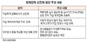 """[현실이 된 감사대란] """"감사인 간 이견 조율 대비 정부 가이드라인 마련을"""""""
