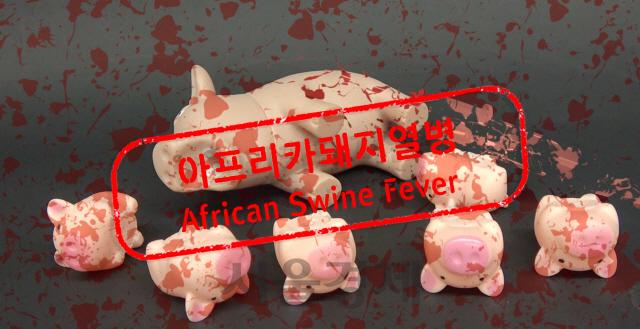 아프리카돼지열병, 원인부터 해법까지 7분 총정리