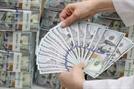 달러화 약세에 한은 외환보유액 11억달러↑...총 4,031억달러