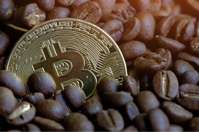 브라질 커피농장 협동조합 '원두 기반 코인 만든다'