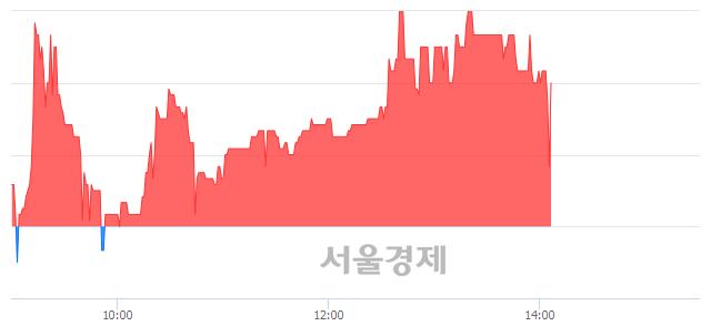 코티엘아이, 매수잔량 557% 급증