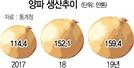 풍년의 역설…양파·마늘값 더 내리나