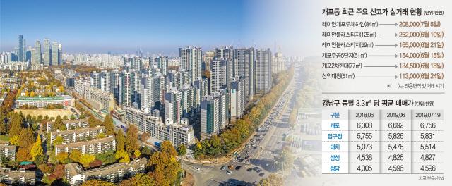 웃돈 10억·84㎡가 20억…개포, 강남 '富村지도' 바꾼다