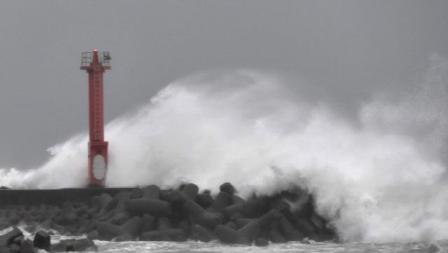 '최대 200㎜ 이상'…8호 태풍 프란시스코 한반도 관통 예상에 물폭탄 초비상