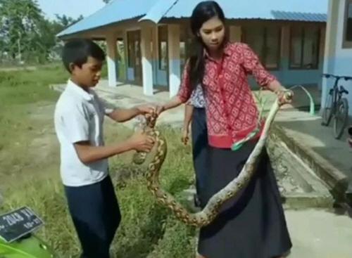 대형뱀 맨손으로 잡은 여교사 '수업 집중 안 하길래'