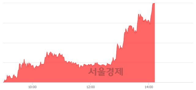 유남성, 상한가 진입.. +30.00% ↑