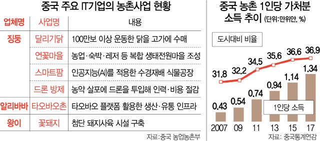 [최수문특파원의 차이나페이지] 28 달리기닭·스마트팜 통해 농가소득 키우지만...토지 국유제로 '한계'