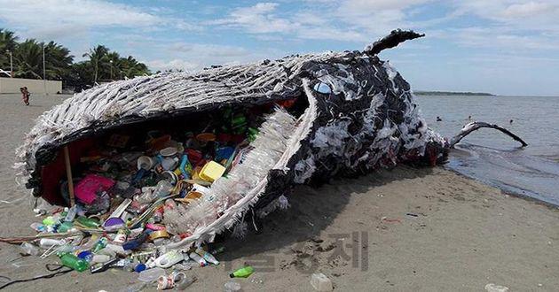 [세바우] 생분해성 플라스틱이 대안…2% 부족한 기술·경제성 해결 관건