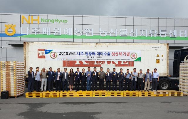 '나주 원황배' 450톤 올해 첫 대미 수출 길 올라