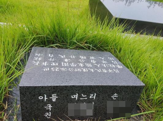 김진태 '조국 부친 묘비에 전 제수씨 이름 있었다' 위장이혼 불씨 재점화
