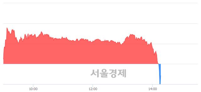 코현성바이탈, 현재가 5.65% 급락