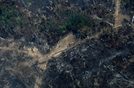 아마존 산불 3주째…원인으로 지목된 中
