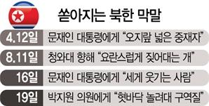 """北, 도 넘은 막말에도…靑 """"대화 잘될 것"""""""