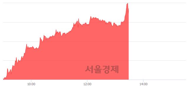 코티씨케이, 전일 대비 13.01% 상승.. 일일회전율은 0.87% 기록