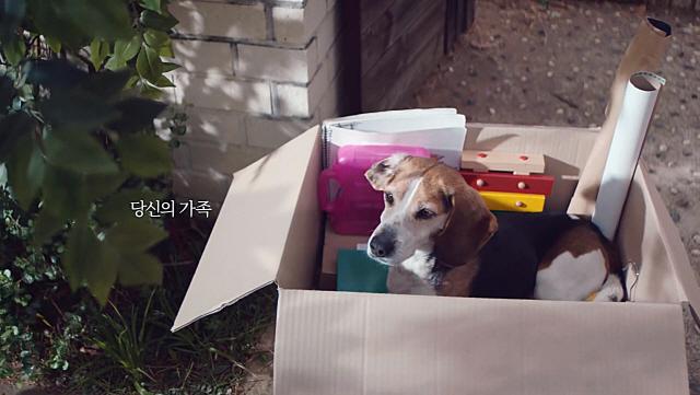 [펫코노미] 펫과 행복한 순간 공유…자연·동물사랑 동참을