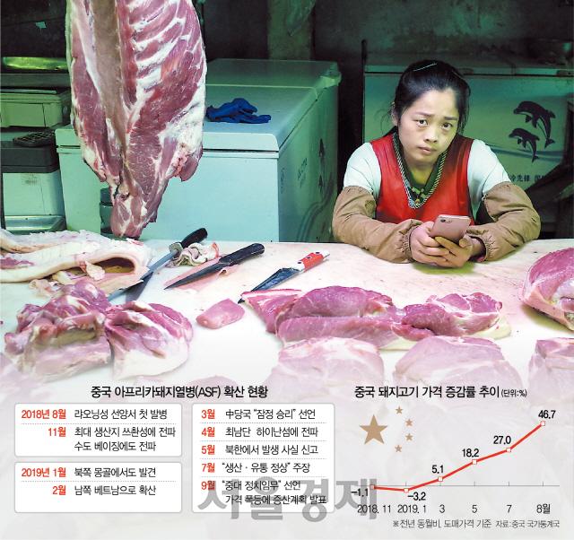 [최수문특파원의 차이나페이지] 33 정부 무능+농민 이기심에 돼지열병 확산…亞육류시장 초토화