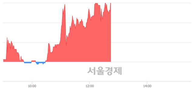 유쌍용양회우, 장중 신고가 돌파.. 7,790→8,300(▲510)