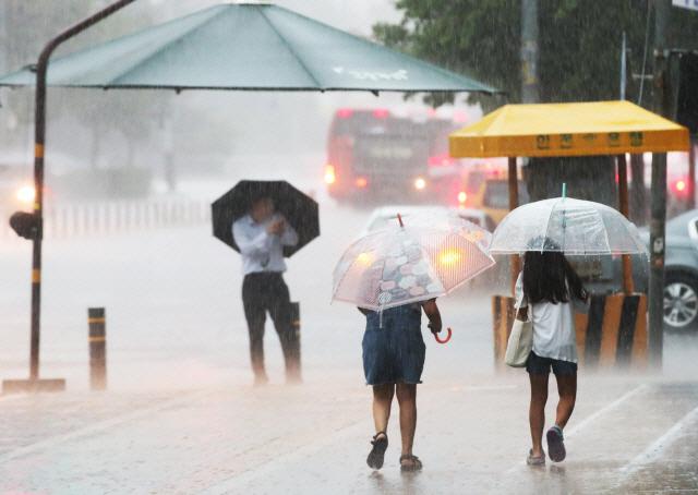 '링링' 이어 17호 태풍 '타파' 또 덮치나…'한반도로 빠르게 접근 경로, 주말 비소식'