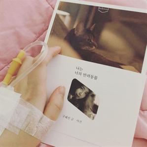 """구혜선, 2주만에 SNS재개...""""여름 입원, 아직 퇴원 못했다"""""""