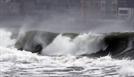 태풍 '타파' 지나갔지만…부산서 1명 사망·21명 부상