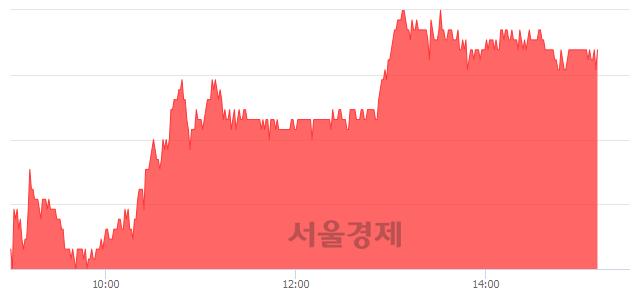 코카페24, 3.64% 오르며 체결강도 강세 지속(198%)