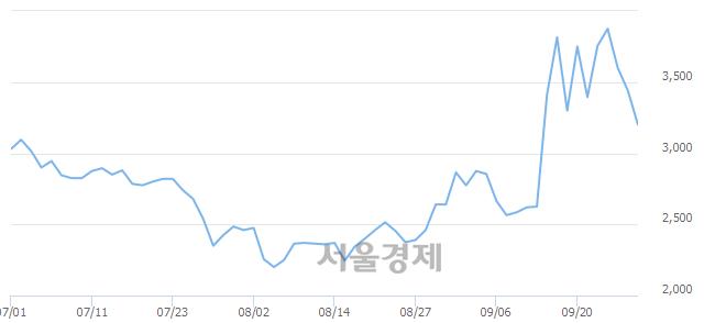 코정다운, 매수잔량 557% 급증