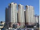 서울 사람들, 경상도 부동산 원정투자 급증