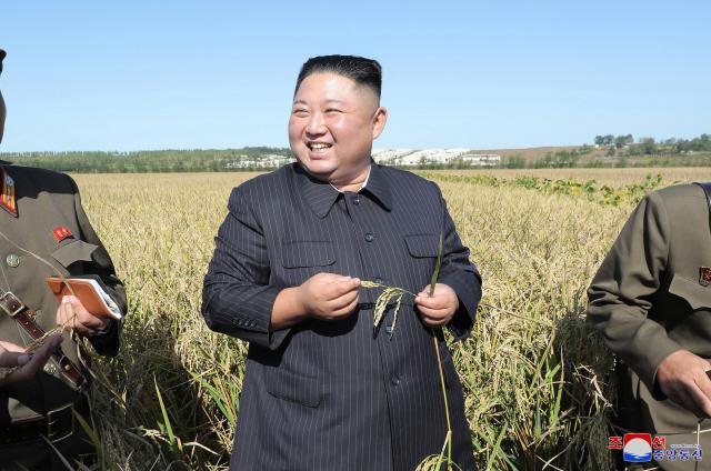 협상 결렬되자..'벼 이삭·옥수수' 잡은 김정은