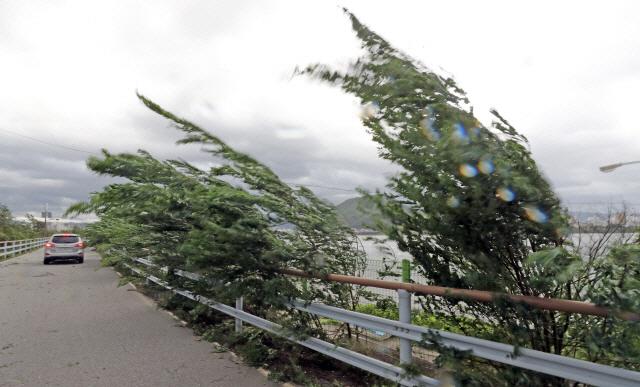 '도쿄 때린다' 강력 태풍 하기비스, 日 본토 접근…'한반도에도 강풍'