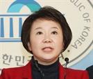 """정미경 """"민주당 배후세력에 통진당 의심"""""""
