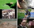 '삽질' 판돈 22조 2천억원의 돈 잔치로 죽어간 강들의 충격 스틸 공개