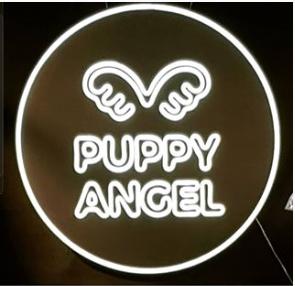 퍼피엔젤, 변치 않는 마음으로 강아지옷·애견용품 브랜드의 새로운 가치를 쓰다