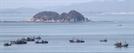 [사진]中어선 서해 불법조업 다시 기승