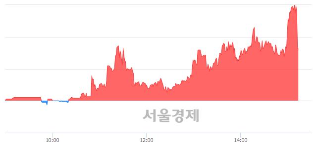 유금양, 현재가 8.10% 급락